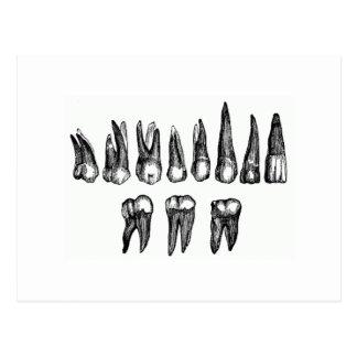 Vintage Zähne Postkarte