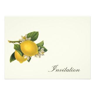 Vintage Zitronen - lädt ein Personalisierte Ankündigungen