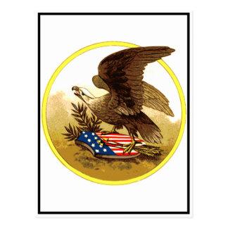 Vintager amerikanischer kahler Adler Postkarten