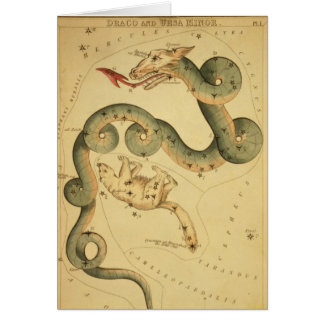 Vintager Astronomiedruck Draco u. Ursa Karte