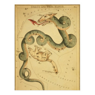 Vintager Astronomiedruck Draco u. Ursa Postkarte