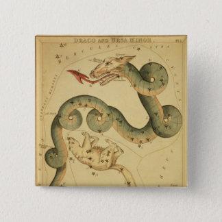 Vintager Astronomiedruck Draco u. Ursa Quadratischer Button 5,1 Cm