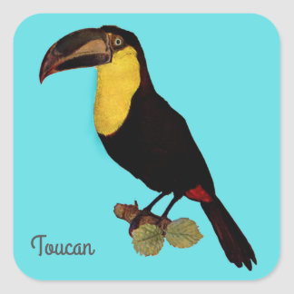 VINTAGER AUFKLEBER TOUCAN VOGEL-YELLOW-THROATED