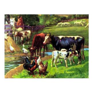 Vintager Bauernhof Postkarte