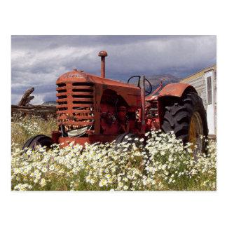 Vintager Bauernhof-Traktor in der Postkarte