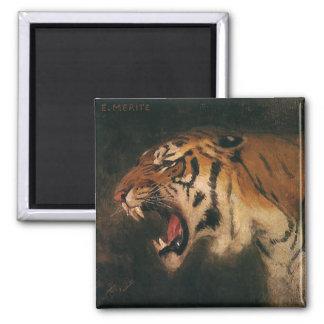 Vintager bengalischer brüllende Tiger-große Katze, Quadratischer Magnet