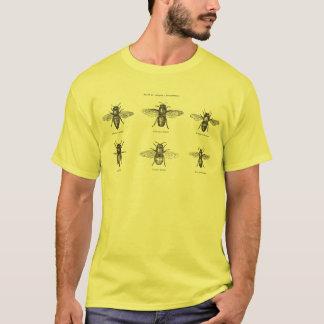 Vintager Bienen-Bienen-Honig-wissenschaftliche T-Shirt