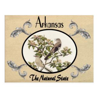 Vintager Blick-alter Postkarten-Arkansas-Staat Postkarte