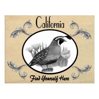 Vintager Blick-alter Postkarten-Kalifornien-Staat Postkarte