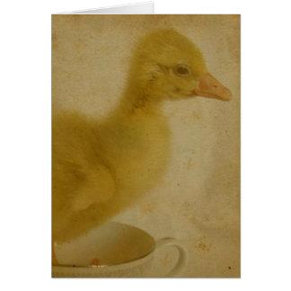 Vintager Blick Gosling Karte