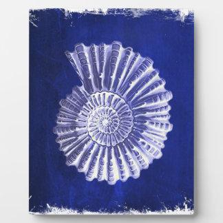 Vintager botanischer blauer weißer Küstenseashell Fotoplatte