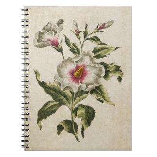 Vintager botanischer BlumenAlthea Frutex Notizblock