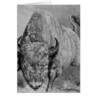 Vintager Büffel-Druck Karte