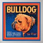 Vintager Bulldoggen-Marken-Kisten-Aufkleber