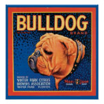 Vintager Bulldoggen-Marken-Kisten-Aufkleber Poster