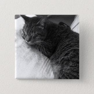 Vintager Button-Knopf des Schlafenkatzen-Foto-| Quadratischer Button 5,1 Cm