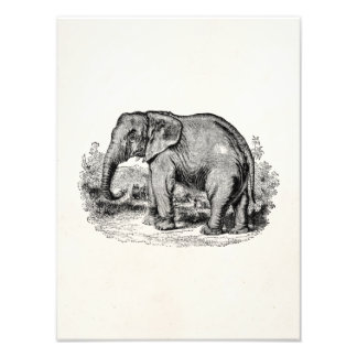 Vintager Elefant-personalisierte Elefant-Tiere Kunstphoto