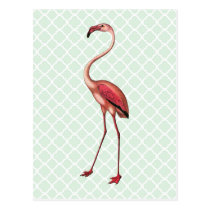 Vintager Flamingo auf tadelloser Quatrefoil Postkarten