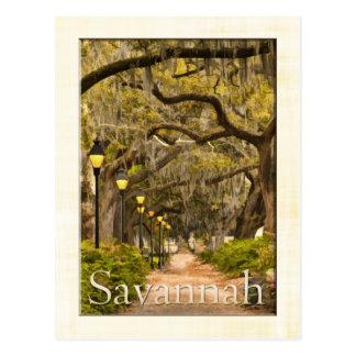 Vintager Forsyth Park - Savanne, GA Postkarte