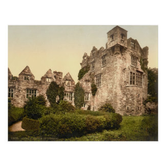 Vintager Foto-Druck von Donegal Castle (1900) Poster