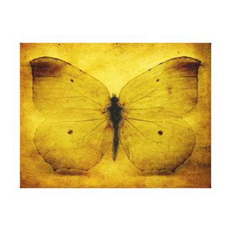 Vintager gelber Schmetterling Leinwanddruck
