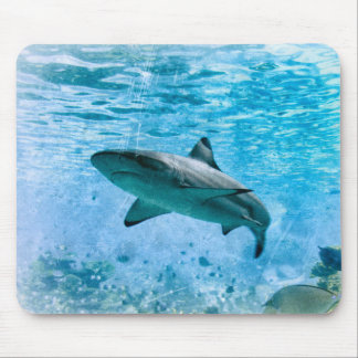 Vintager Haifisch Mousepad