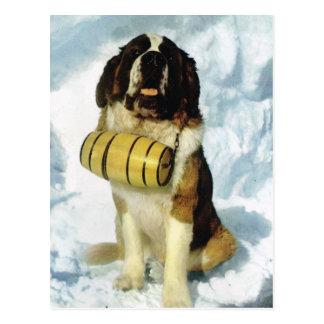 Vintager Hund der Schweiz Bernhardiner mit Postkarte