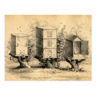 Vintager Imkerei-Bienenstock-Bienenstock Postkarte
