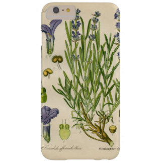 Vintager Lavendel-botanisches Druck iPhone 7 Barely There iPhone 6 Plus Hülle