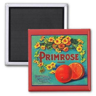 Vintager Magnet der Orange Co.