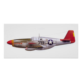 Vintager Mustang P-51 Tuskegee Flieger-Zweiter Poster