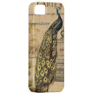 Vintager Paris-Modepfau mit Blumengirly Hülle Fürs iPhone 5