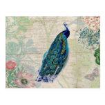 Vintager Pfau, Blumen und Schmetterling Postkarten