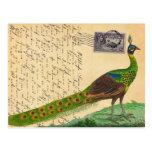 Vintager Pfau-Buchstabe mit Briefmarke u. Poststem Postkarten