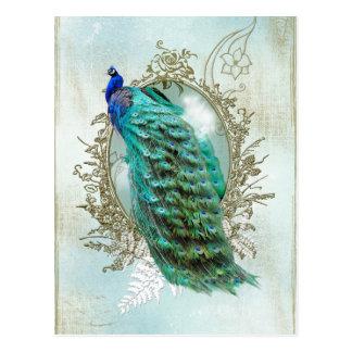 Vintager schäbiger Vogel des schönen Türkises des Postkarten