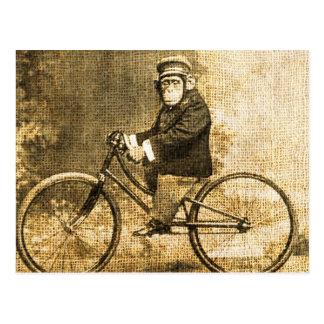 Vintager Schimpanse auf einem Fahrrad Postkarte
