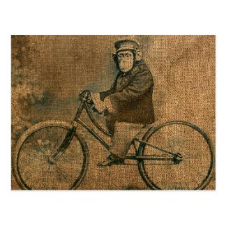 Vintager Schimpanse der Fahrrad fährt