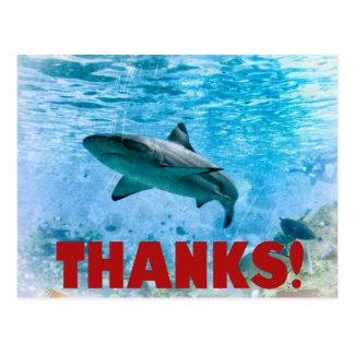 Vintager Seestreifen-Haifisch danken Ihnen Postkarte