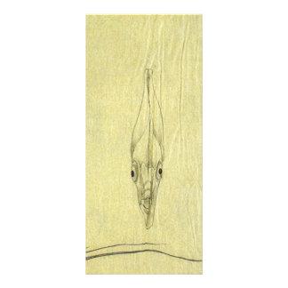 Vintager Threadfin Trevally, afrikanischer Werbekarte