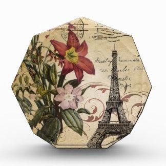Vintager Turm Paris Eiffel Skripte der botanischen Auszeichnung