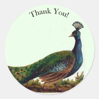 Vintager viktorianischer Pfau danken Ihnen Runder Aufkleber