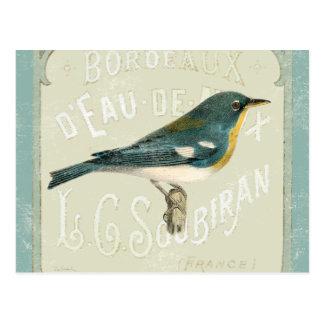 Vintager Vogel, der das Recht gegenüberstellt Postkarte