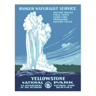 Vintager Yellowstone WPA Postkarte