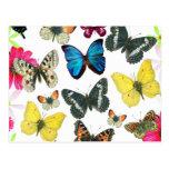 Vintages blaues Rot-Gelb-bunte Schmetterlinge Postkarten