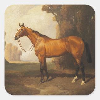 Vintages Brownthoroughbred-Pferd Quadratischer Aufkleber