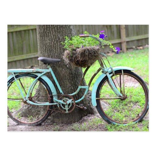 vintages fahrrad blumen korb fahrrad im garten postkarte zazzle. Black Bedroom Furniture Sets. Home Design Ideas
