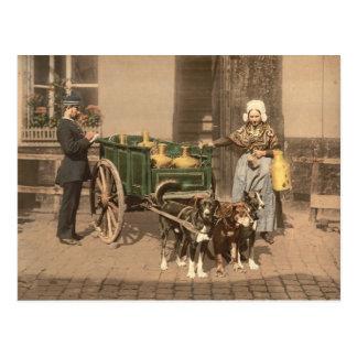 Vintages flämisches Milch-Mädchen Postkarte