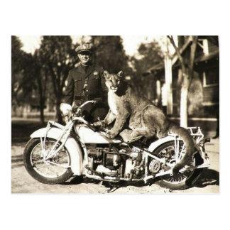 Vintages Foto des Polizeioffiziers auf Motorrad Postkarte