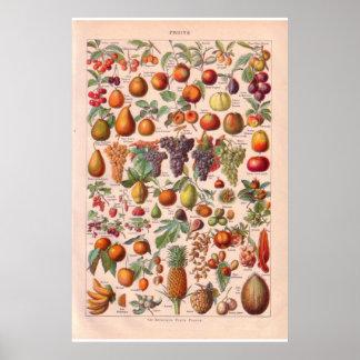 Vintages Fruchtplakat 1920 Posterdruck