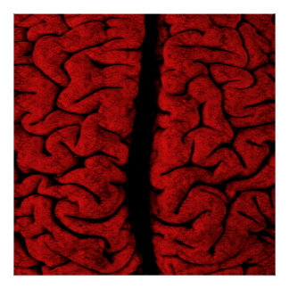 Vintages Gehirn-Plakat Poster